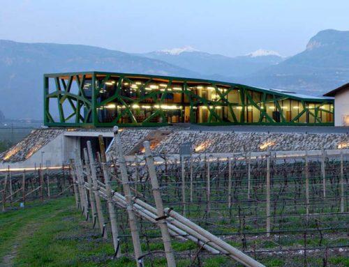 I Vini di Montagna (Trentino Alto Adige)